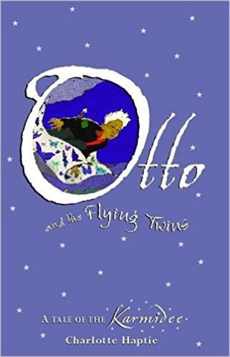 Book cover for 'Otto and the Flying Twins'
