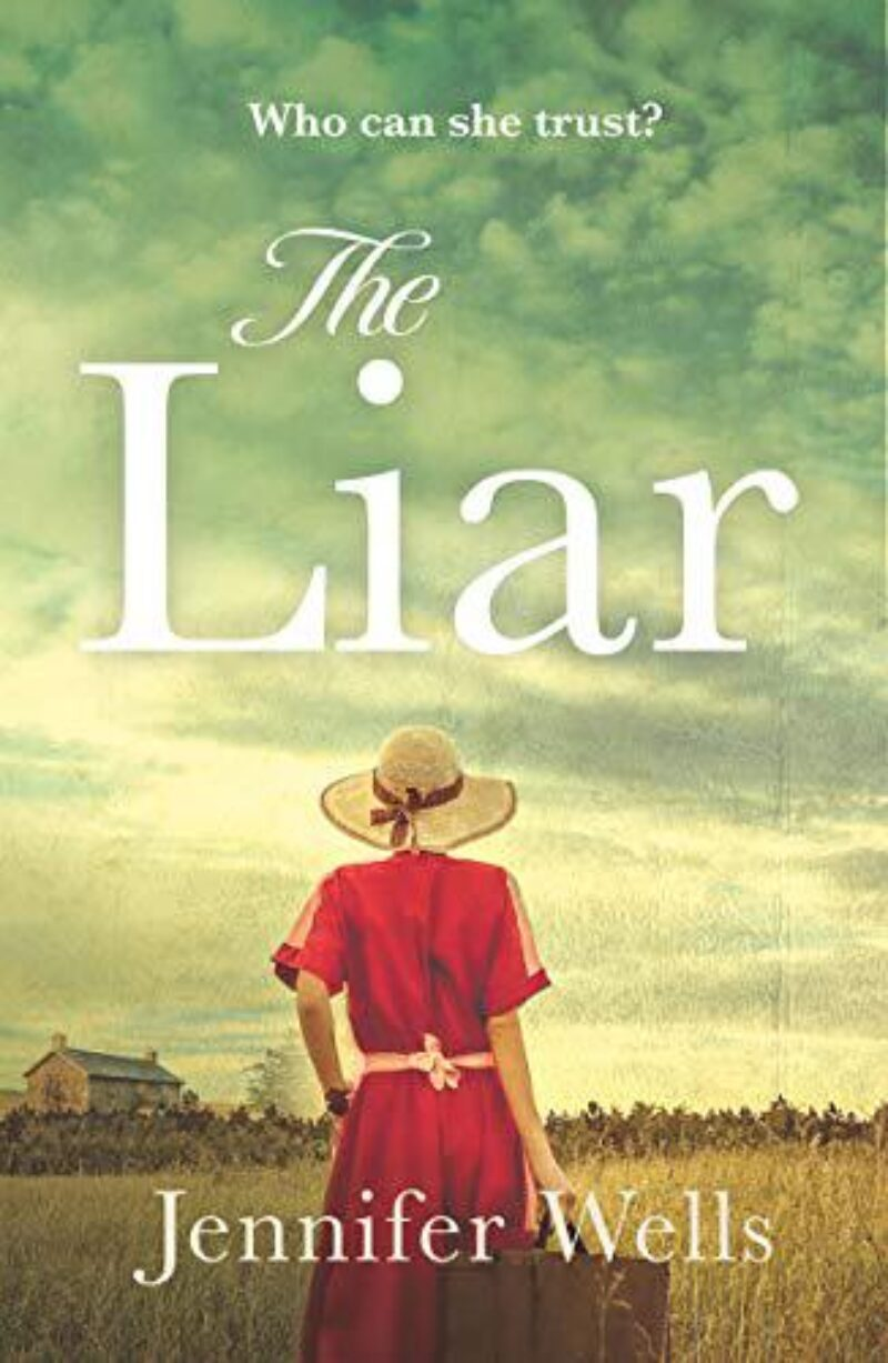 Book cover for 'The Liar'