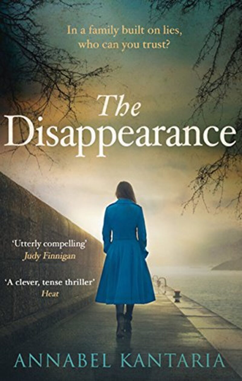 Book cover for 'The Disappearance'