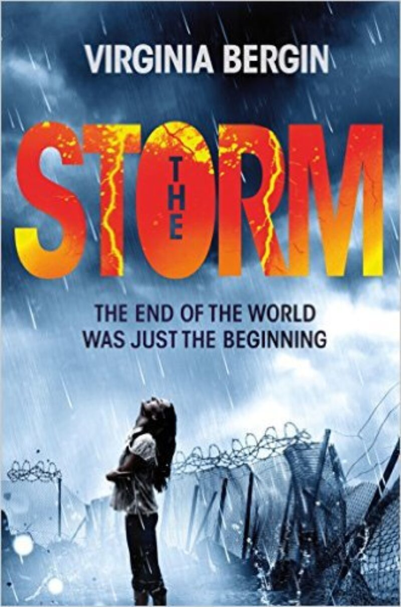 Book cover for 'The Storm'