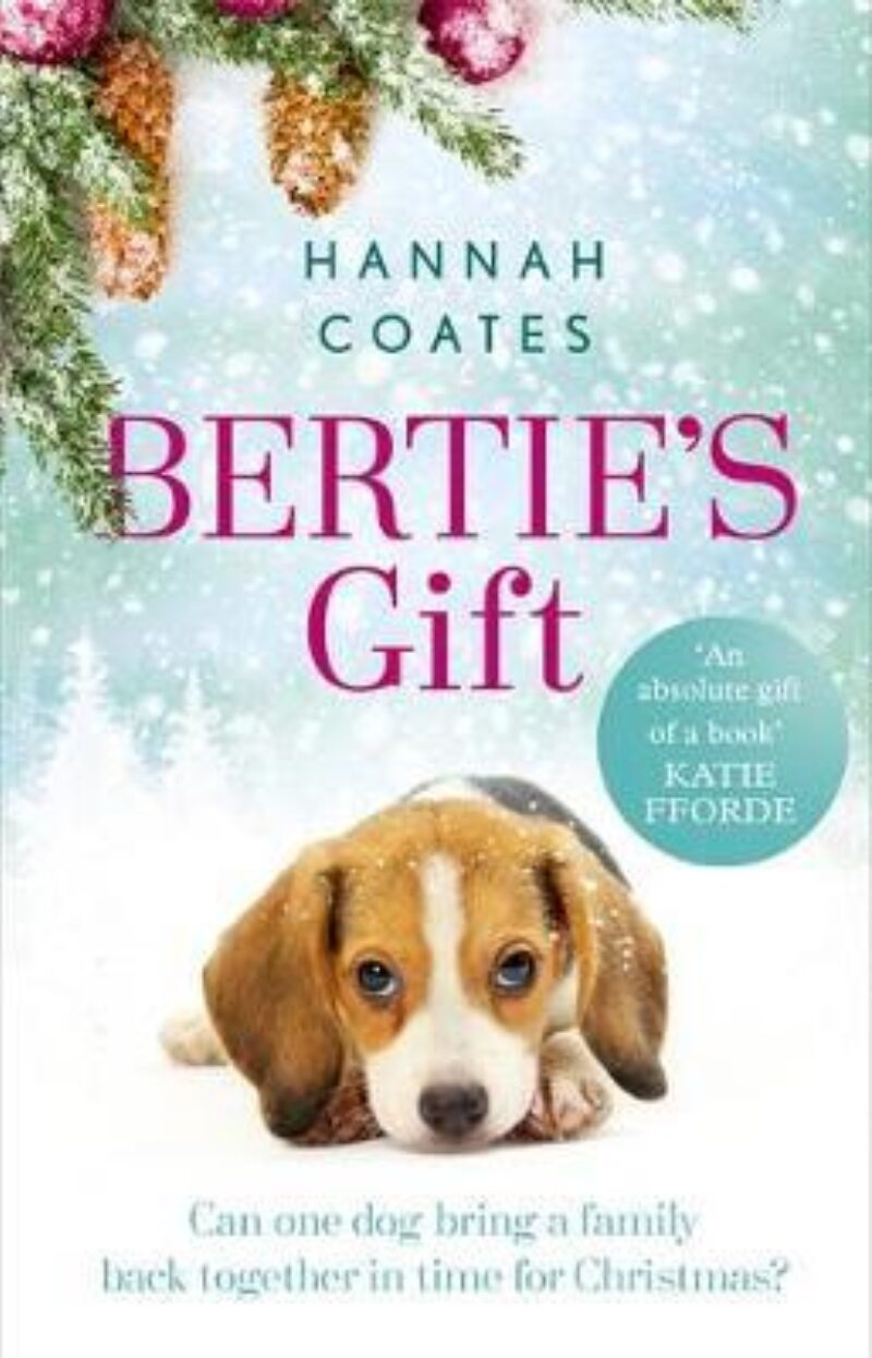 Book cover for 'Bertie's Gift'