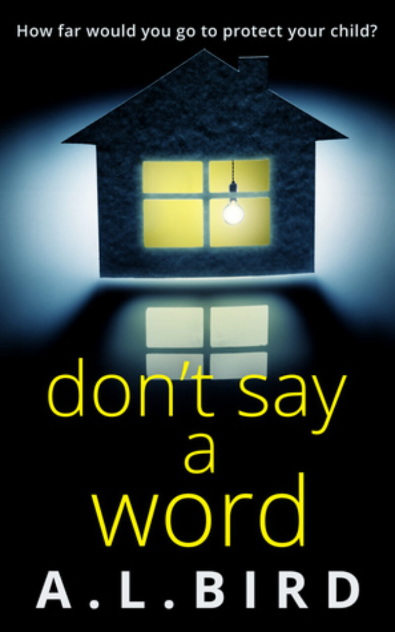 Book cover for 'Don't Say A Word'