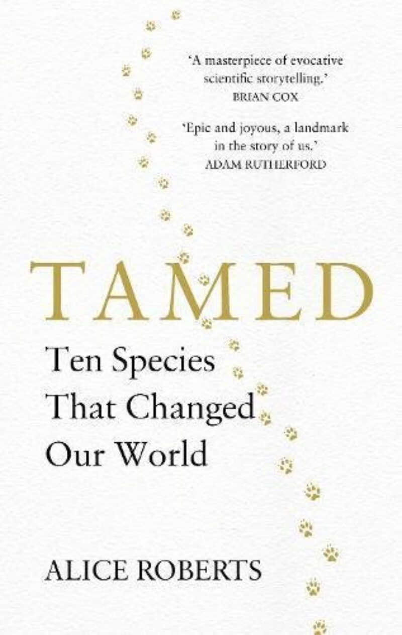 Book cover for 'Tamed'