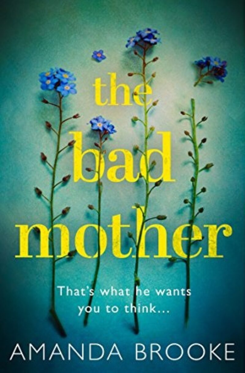 Book cover for 'The Bad Mother'