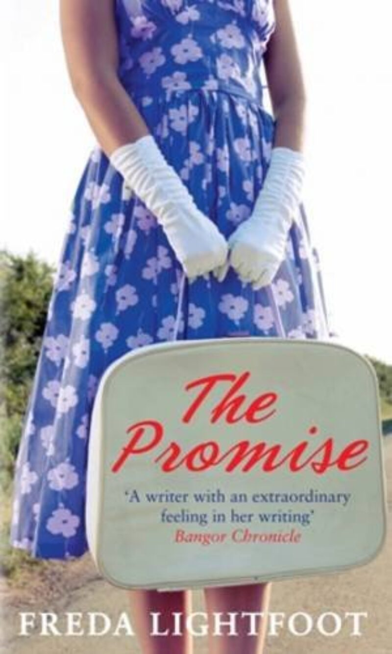 Book cover for 'The Promise'