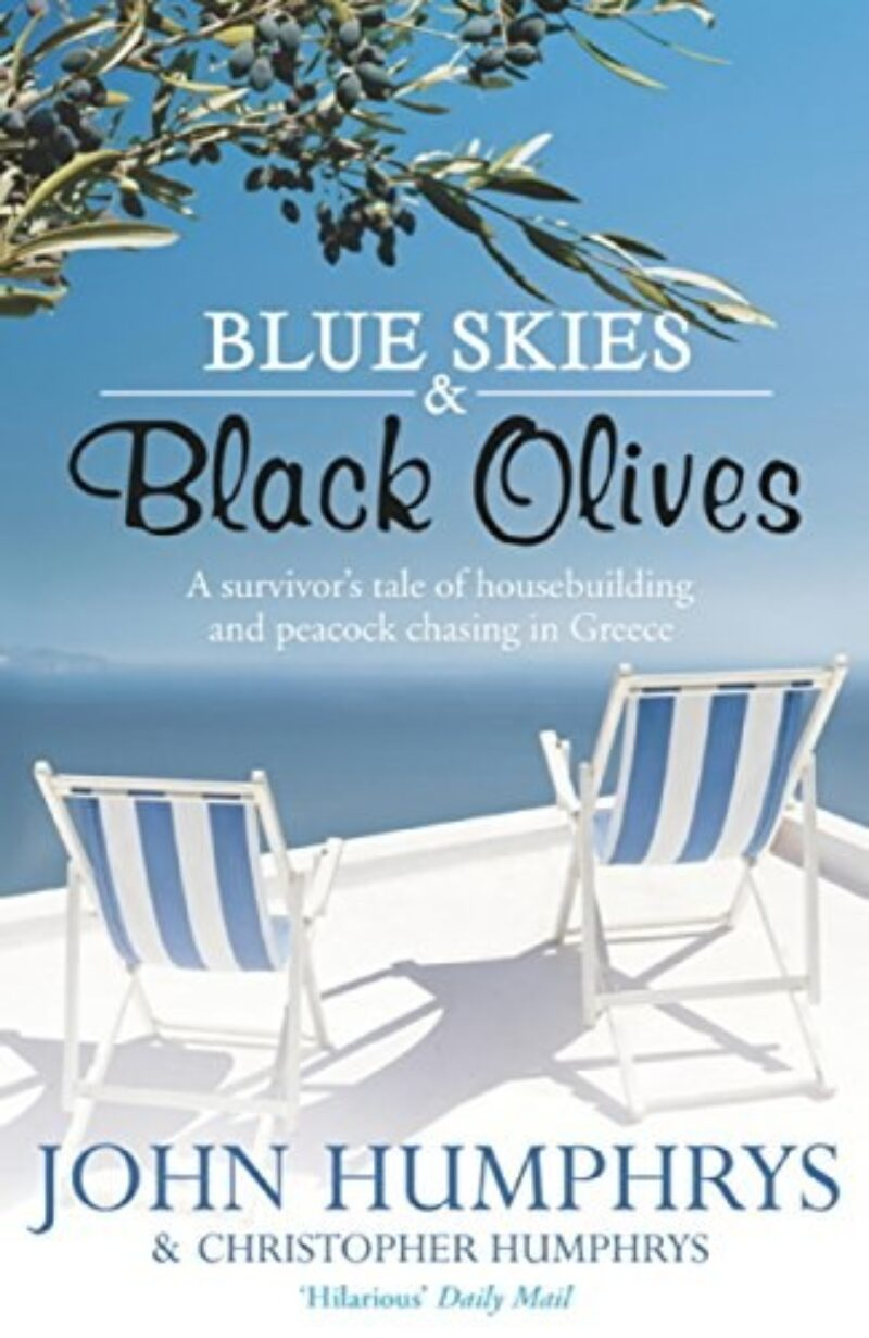Book cover for 'Blue Skies And Black Olives'