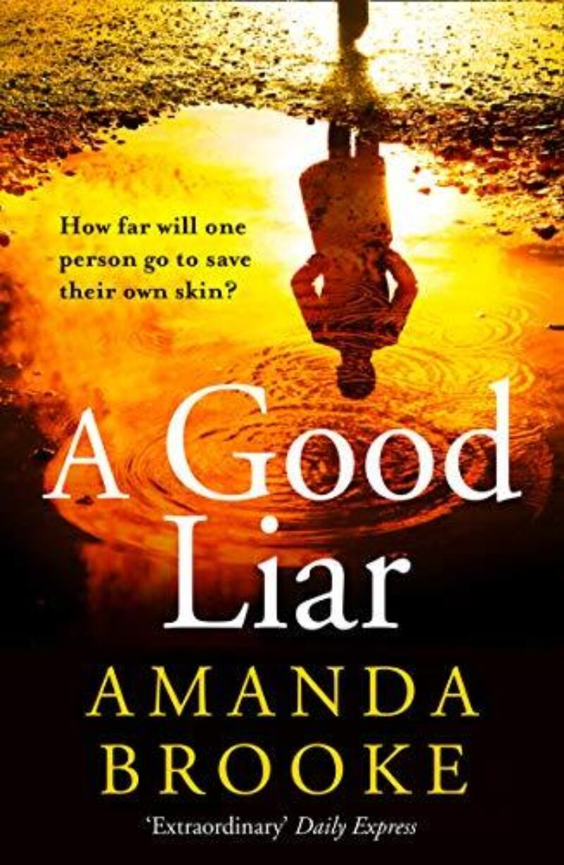 Book cover for 'A Good Liar'