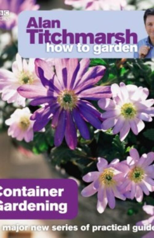 How To Garden Container Gardening